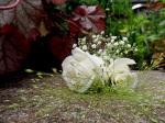 Ivory rose boutonnière