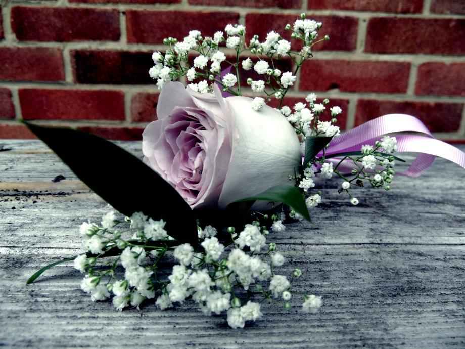 Lilac rose boutonnière