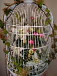 Large, flower-filled bird-cage