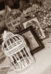 Sepia photo of vintage bird cage and 1940s photographs